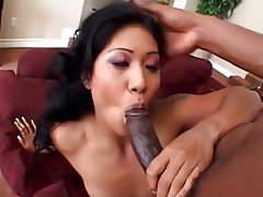 Asian, Babe, Big Black Cock, Big Cock